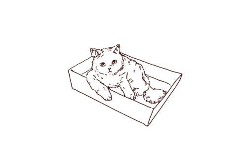 箱に入っている猫のイラスト