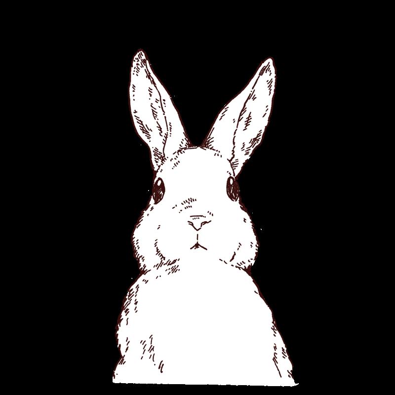 うさぎの線画イラスト