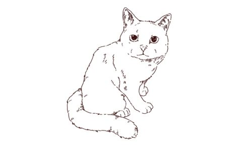猫の全身イラスト,フリーイラスト,フリー素材,線画イラスト
