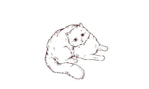 くつろいでいる猫さんの線画イラスト