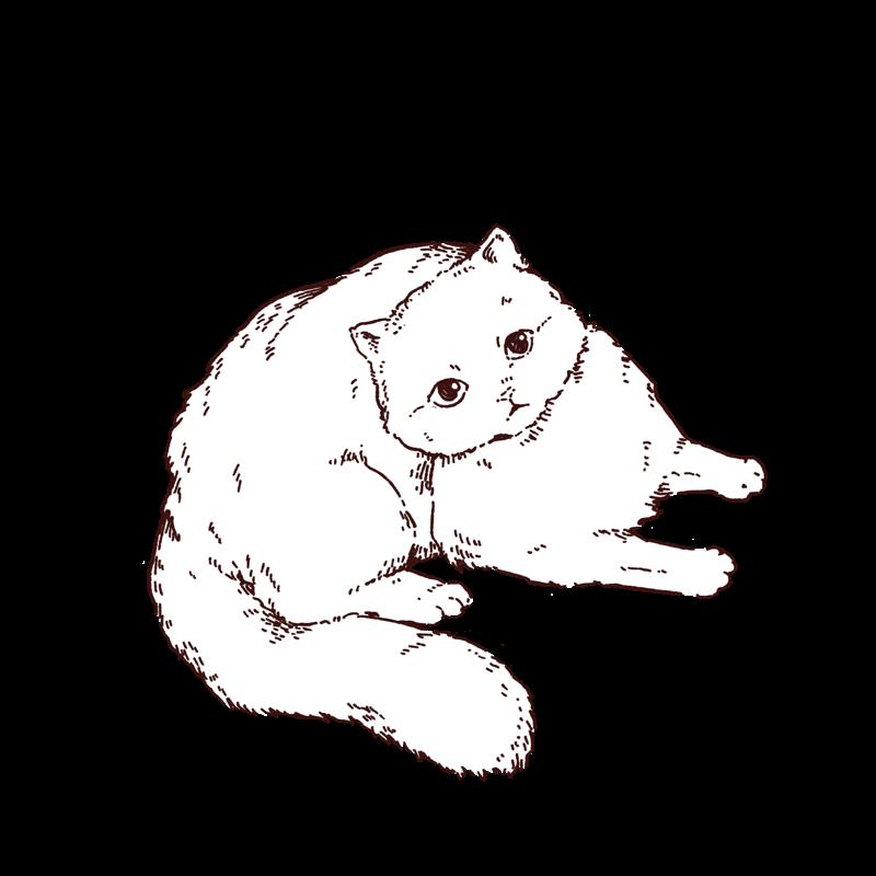 猫の線画イラスト