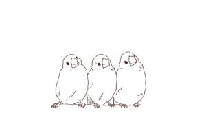 文鳥(小鳥)の線画イラスト