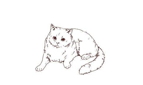 くつろいでいる猫のイラスト,フリーイラスト,フリー素材,線画イラスト