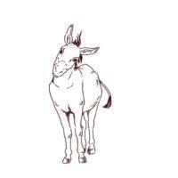 首を傾げているロバ(ドンキー)のイラスト,フリーイラスト,フリー素材,線画イラスト