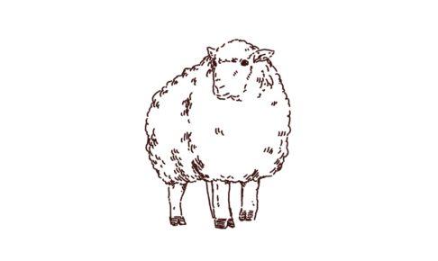 もこもこ羊のイラスト,フリーイラスト,フリー素材,線画イラスト