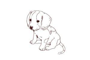 子犬(ビーグル犬)のおすわりイラスト,フリーイラスト,フリー素材,線画イラスト