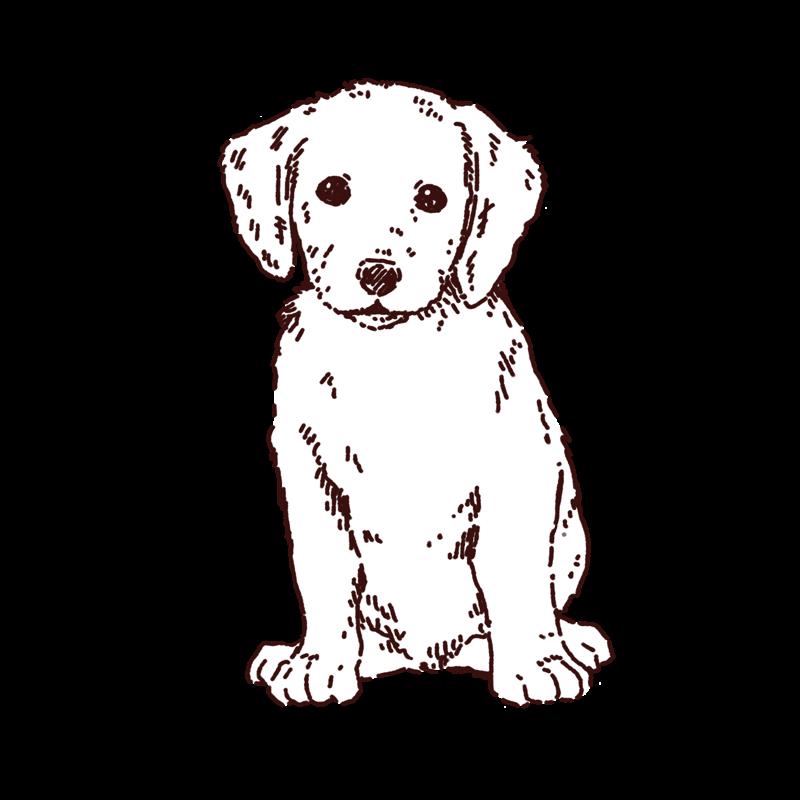 子犬がおすわりしているイラスト,フリーイラスト,フリー素材,線画イラスト
