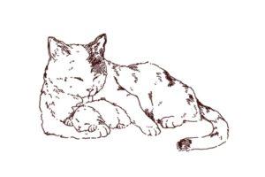猫親子のイラスト,フリーイラスト,フリー素材,線画イラスト,子猫,三毛猫